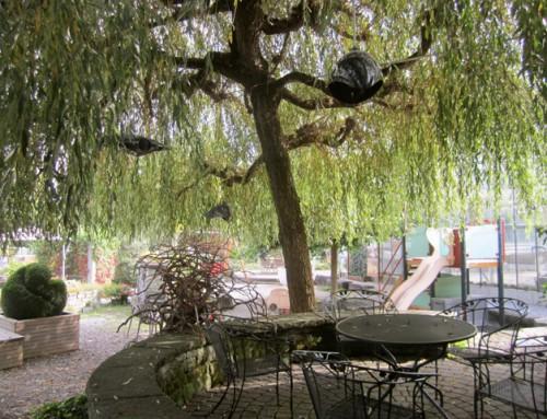 EGLI GRUN, Rickenbach CH